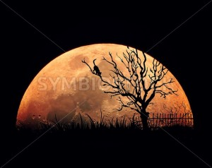 Tree and Moon Rising Illistration - Symbiostock Express Demo