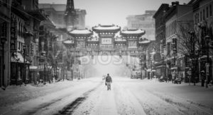 Winter In China - Symbiostock Express Demo